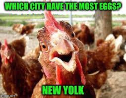 Chicken Meme Jokes - joke chicken memes imgflip