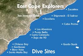 Colorado snorkeling images Sites conditions scuba diving whale watching and snorkeling jpg