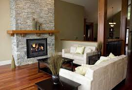best wood burning fireplace insert image collections home