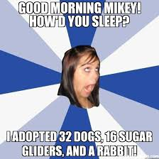 Mikey Meme - good morning mikey how d you sleep i adopted 32 dogs 16 sugar