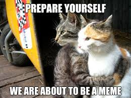 Prepare Yourself Meme - prepare yourself we are about to be a meme restraining cat quickmeme