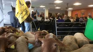 chambre agriculture aude carcassonne la colère des agriculteurs bio aux retards des