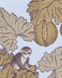 monkey wallpaper for walls download monkey wallpaper for walls gallery