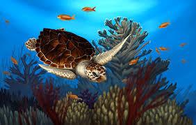 loggerhead sea turtle by nachiii on deviantart