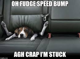Speed Bump Meme - funny dog back seat imgflip