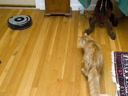 Roomba On Laminate Floors What Does Your Living Room Say About You Irobot Nasdaq Irbt U0027s