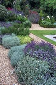 Houston Landscape Design by Low Maintenance Landscapes Low Maintenance Landscaping Plants