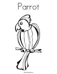 parrot coloring twisty noodle