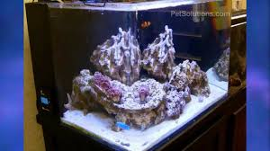 current usa orbit marine aquarium led light petsolutions current usa orbit marine led aquarium light fixture