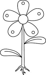 Part Of Flowers - unlabeled flower diagram free download clip art free clip art