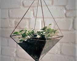 glass terrarium etsy