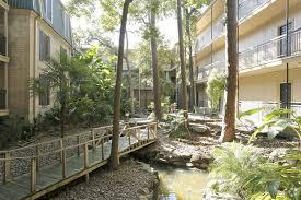 the tree tops at post oak rentals houston tx apartments