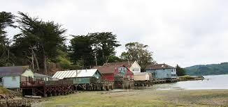Cottages At Point Reyes Seashore by West Marin Point Reyes Chamber Of Commerce Point Reyes National