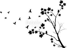 autumn tree silhouette with birds flying stock image and royalty