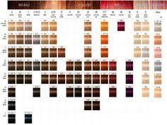 igora hair color instructions igora royal color chart igora royal color chart download free