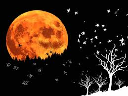 halloween background moon hd halloween moon images