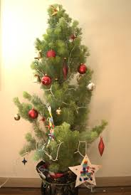 Australian Christmas Native Christmas Tree Mallee Design