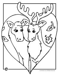 deer coloring pages animal jr