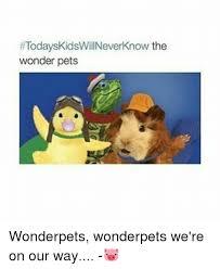 25 memes pets pets memes
