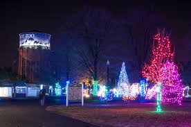 your vote can make wild lights at the detroit zoo the best zoo
