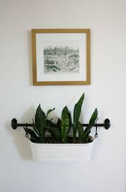 Planters That Hang On The Wall Plants Stupendous Wall Mounted Plant Pot Hangers Plant Standbest