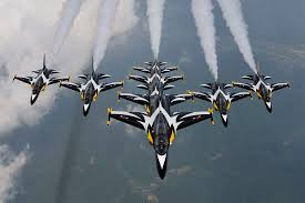 black eagles aerobatic team wikipedia