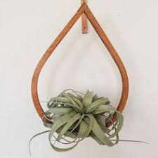 Modern Hanging Planters Brass Geometric Shape Hanging Planter Hanging Air Plant Gold