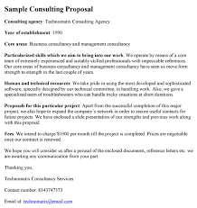 templates for business consultants sle consulting proposal marketing template experience screenshoot