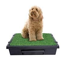 black friday litter boxes amazon 97 best dog supplies images on pinterest dog supplies dog stuff