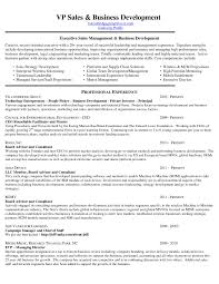 professional business resume template sle business resume template best of immigration essays