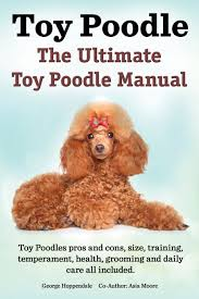 toy poodles the ultimate toy poodle manual toy poodles pros and