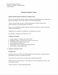 Resume Samples No Experience by Example Job And Template Objective Examples No Experience Format