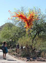 Desert Botanical Garden Chihuly Chihuly Glass At Desert Botanical Garden In Az