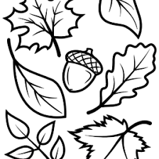 free printable leaf coloring pages for kids leaf coloring pages