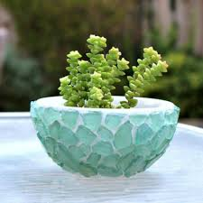 cactus home decor 11 ways to make expensive looking home decor with a bowl hometalk
