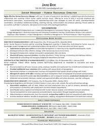 Human Resource Resume Sample by View Human Resources Manager Resume Example