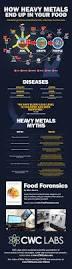 best 25 heavy metal detox ideas on pinterest dynamic analysis