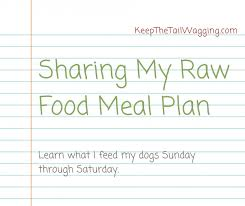 sharing my raw feeding meal plan keep the tail wagging