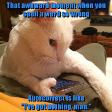 Meme Cheezburger - that awkward moment http cheezburger com 9041796352 funny cats