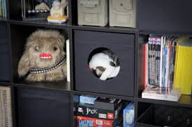 stuva litterbox for 4 kitties ikea hackers ikea hackers