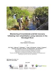 monitoring of invertebrate and fish recovery following river