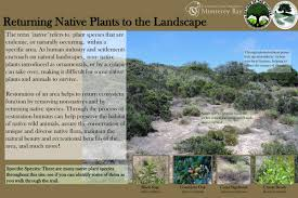 benefits of native plants habitat management cal state monterey bay