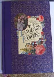 Japanese Language Of Flowers - hanakotoba u2014 the japanese language of flowers u2014 medium language