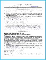Sample Senior Management Resume It Auditor Resume Resume Cv Cover Letter