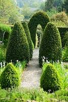 English Box Topiary - 186 best topiary u0026 parterre u0026 hedge images on pinterest