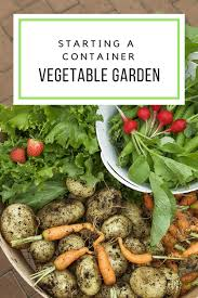 growing a vegetable garden in containers small space gardening