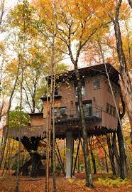 cool tree houses tree house modern design nature inspired