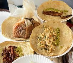 insectes dans la cuisine tacos frit d insectes cuisine mexicaine image stock image du