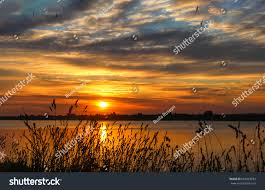 Sunset Orange by Sunset Grass On River Sunset Landscape Stock Photo 602063852