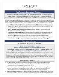 Best It Resume Sample by Vp It Sample Resume Executive Resume Writing Services For Cio
